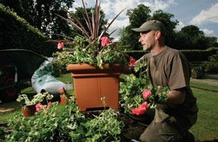 A gardener planting up a pot