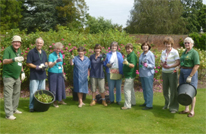 Volunteers in the rose garden