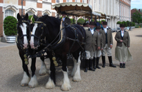 Shire horses with tram