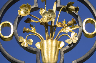 Golden Gates flower detail