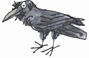 Cartoon Raven by Tim Archbold